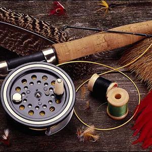 Охотничьи и рыболовные магазины Брейтово